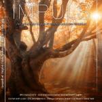 IMPULS Nr. 8 Q4/17